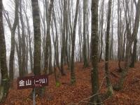 Photo_20201204162001